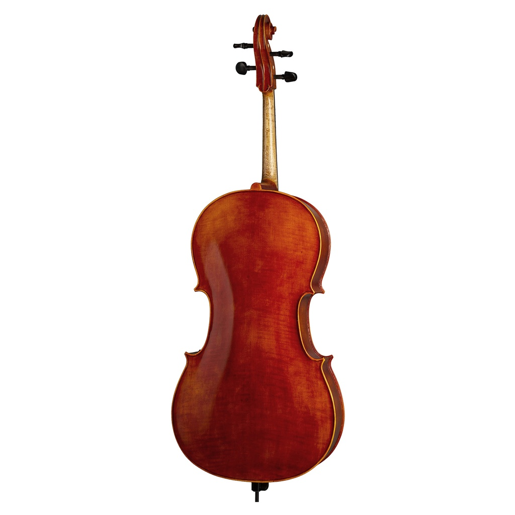 Cello Outfit AS-190