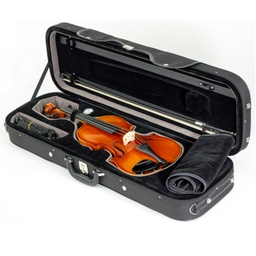 Paesold Violin Outfit PA802E-2