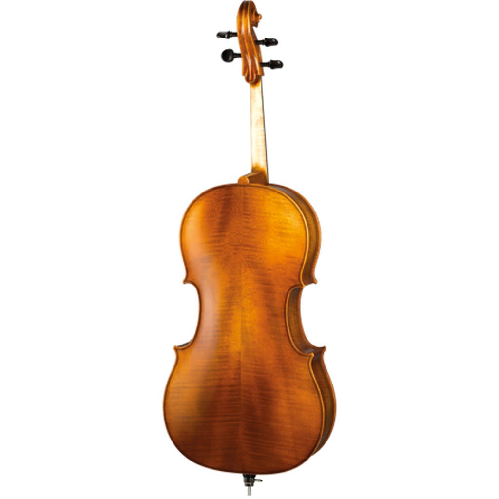 Paesold Cello PA601E (copy)-2