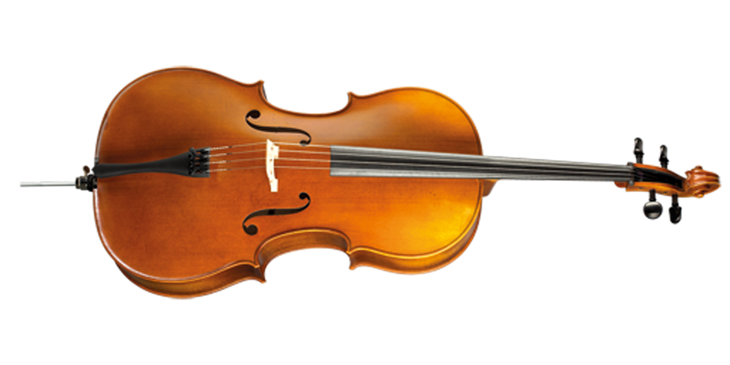 Hofner Cello H8 (copy)-1